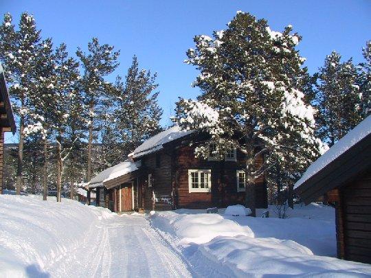 Bardøla Hyttegrenda 8...